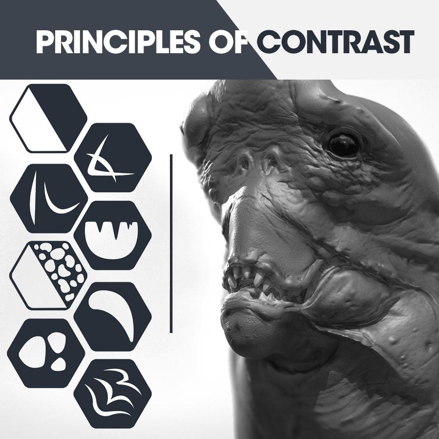 Principles of contrast